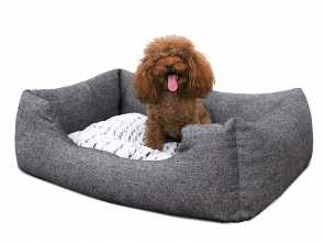 divani per cani fai da te SONGMICS Cuccia Divano Letto, Cani Cuscino Materassino Lavabile S Dimensioni Esterne: 60 x 50 cm PGW22G: Amazon.it: Prodotti, animali domestici Costoso 6 Divani, Cani, Da Te